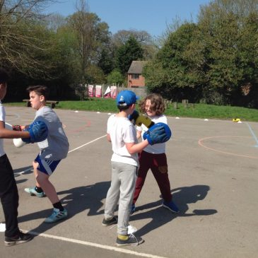 Boxercise in Maple Class