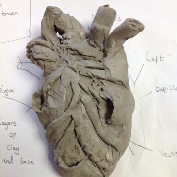 Clay sculptures of the heart