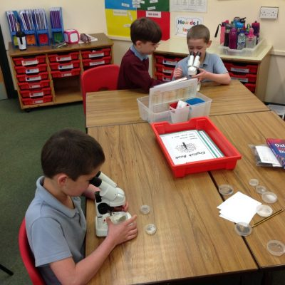 Exploring the microscopes