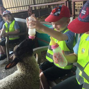 Poplar Class visit to Farmer Gows