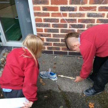 Friction investigation – Maple Class