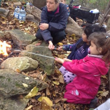 An autumn afternoon around the fire